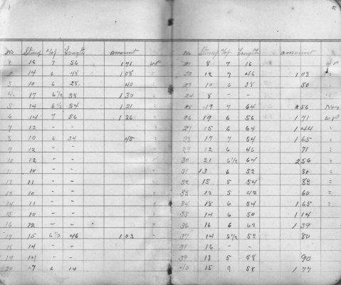 Henry K. Gustin's Lumber Cut Record