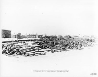 Logs for Island Mill in the Thunder Bay River