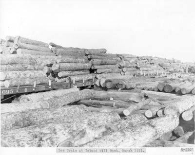 Log Train along the Thunder Bay River