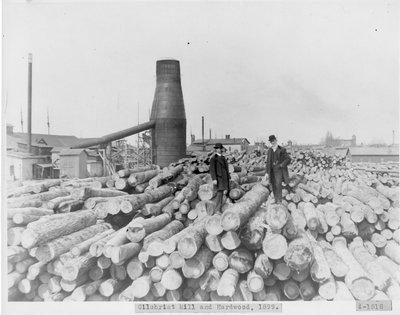 Hardwood for Gilchrist Lumber Mill