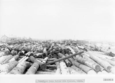 Comstock Lumber Mill Log Bank on Thunder Bay River