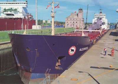ALGOWOOD (1980, Bulk Freighter)