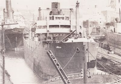 CAYUGA (1920, Package Freighter)