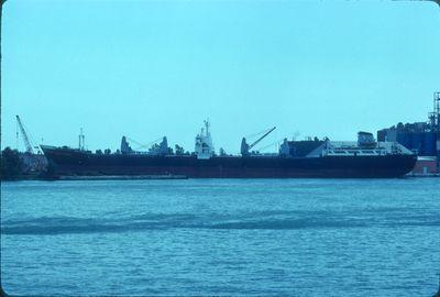 CORONA AUSTRALE (1959, Bulk Freighter)