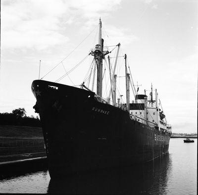 CRUX (1956, Ocean Freighter)