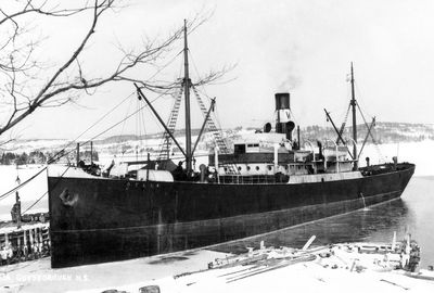 DELIA (1907, Package Freighter)