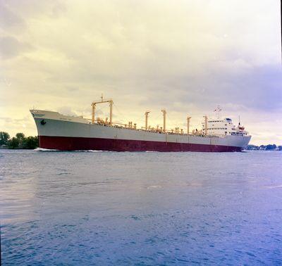 DELPHIC SKY (1963, Ocean Freighter)