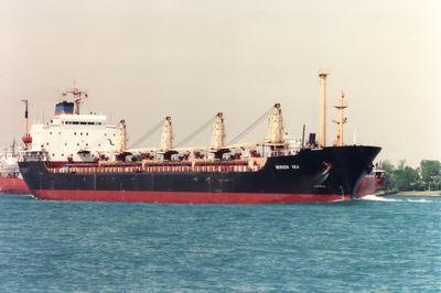 GEMINI PIONEER (1977, Ocean Freighter)