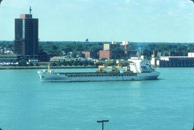 ALIDA GORTHON (1977, Ocean Freighter)