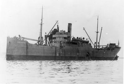 LAKE SAPOR (1919, Package Freighter)
