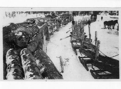 Logging sleighs in winter.