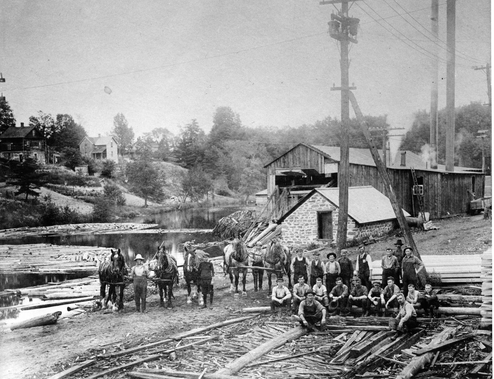 Tennant sawmill, Bracebridge, Ont.