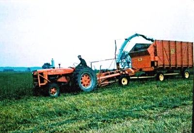Tractor pulling a Fox wagon harvester