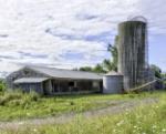 Cameron Road # 228 Barn 2
