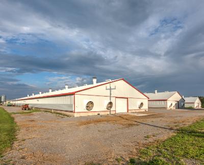Lawson Settlement Road - 19 Barn3