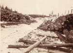 Logging in Burk's Falls: The Lumber Mills of Burk's Falls