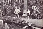Loggers in Burk's Falls, circa 1910