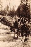 Marsden's Log Hauls, 1935