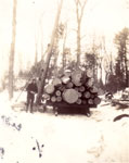 Logging at Marsden's, circa 1930