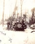 Logging at Marsden's, circa 1930