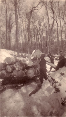 Loading a Logging Sleigh at Marsden's, circa 1930
