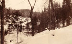 Lumber Camp in the distance, circa 1930