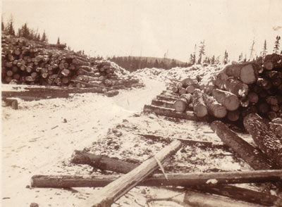 Road Running Through Large Piles of Logs, circa 1930