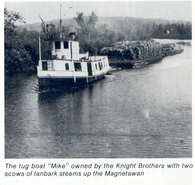 The Mike Pulling Two Scows of Tanbark Steams, circa 1920