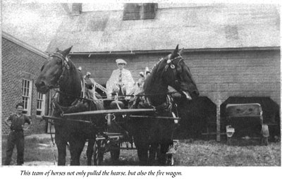 Horse Team Pulling a Funerary Cart, circa 1910