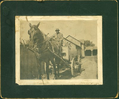 Photograph of Charles Bell with Horse and Cart, St. Catharines [n.d.]