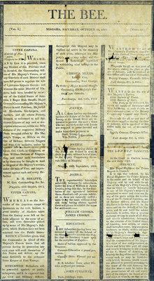 The Bee Newspaper, Vol. I, No. 13