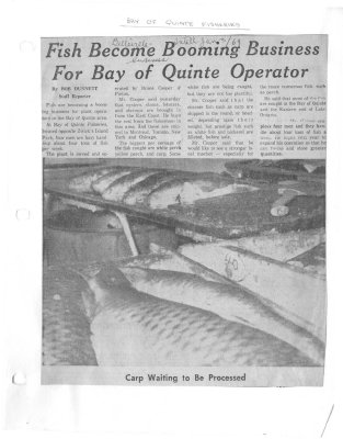 Fish become booming business for Bay of Quinte operator: Bay of Quinte Fisheries