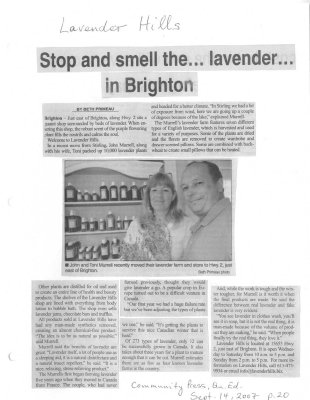 Stop and smell the ... lavender... in Brighton