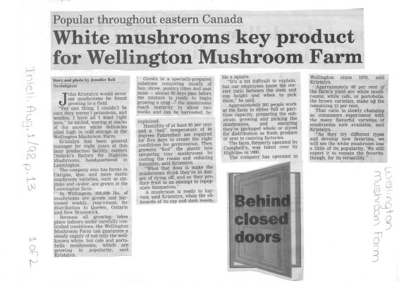White mushrooms key product for Wellington Mushroom Farm
