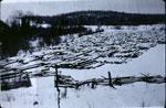 Jack Watkinson's Logs