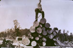 Man Standing on a Load of Logs