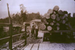 Truck Load of Logs