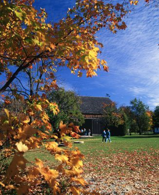 Ontario: Niagara Falls - Autumn leaves frame barn at Ball's Falls Conservation Area