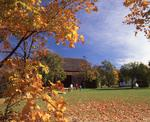 Ontario: Niagara Falls- Autumn leaves frame barn at Ball's Falls Conservation Area