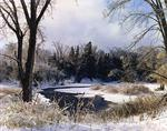 Ontario: Caldeon Hills - early snow on Credit, River, near Terra Cotta