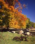 Ontario: Madoc-Perth area- farmyard in autumn, near Mississippi Lake