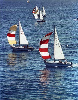 Sailboats near Toronto Island