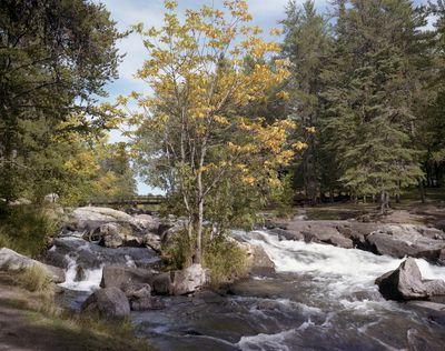 Rushing Provincial Park, Ontario.
