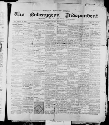 Bobcaygeon Independent (1870), 17 Mar 1899
