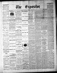 Lindsay Expositor (1869), 19 Jun 1873