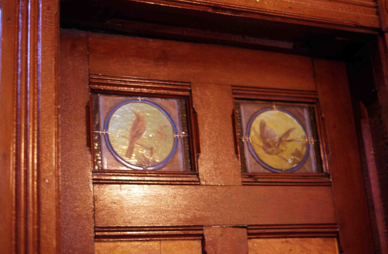 Painted birds inset on door, Sylvester house, Lindsay