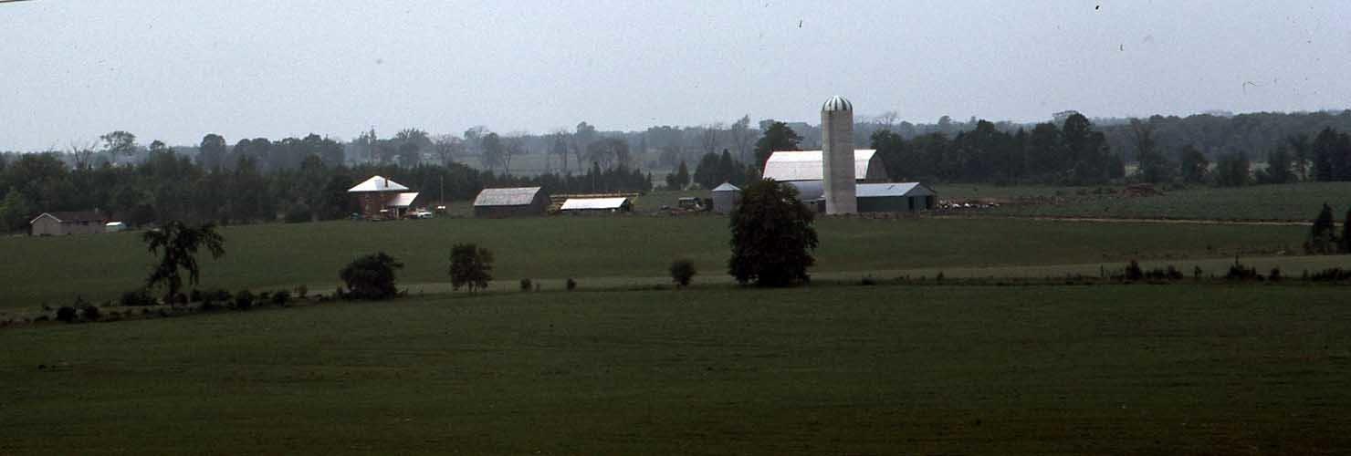 Farm, unknown location