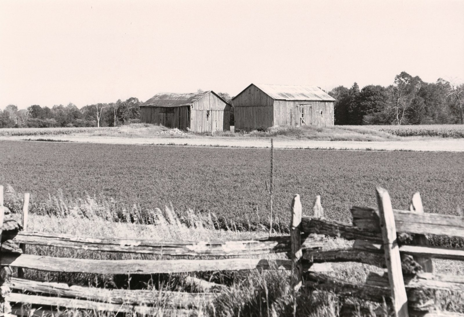 English barn, Mariposa Township