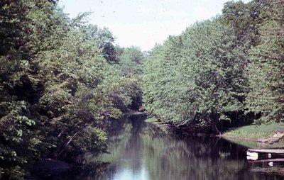 River, location unknown
