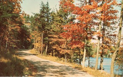 Valentia, Ont. The northern entrance to Lake Scugog. Autumn road, lakeside